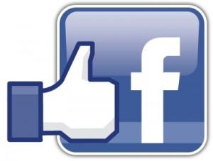 facebook-voetreflex-alblasserdam-homines